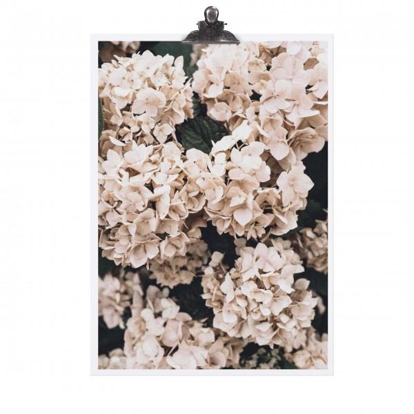 Schönes Blumenmotiv von TAFELGUT!