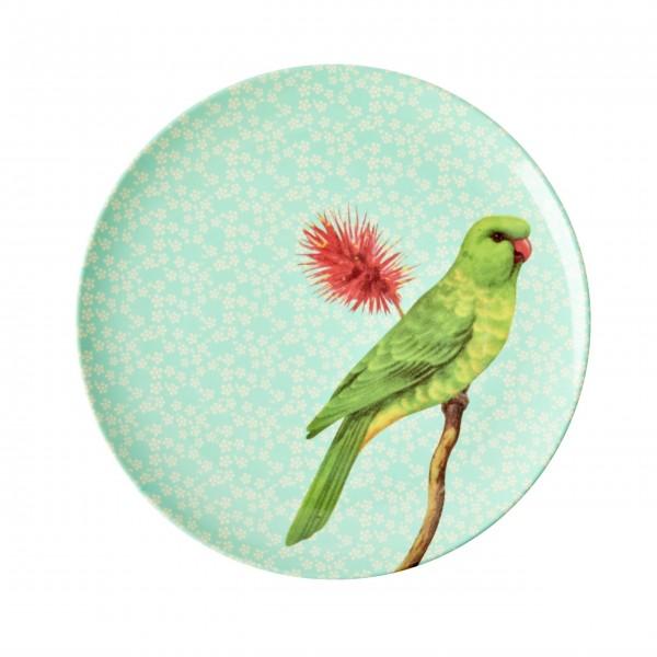 """Piep, piep, piep - hier kommt der Rice Melamin Dessertteller """"Vintage Bird"""" (Grün)"""