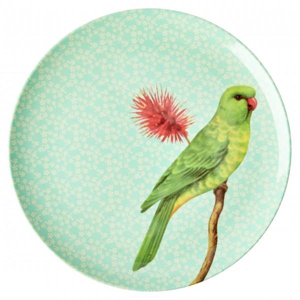 """Piep, Piep, Piep - hier kommt der Rice Melamin Essteller """"Vintage Bird"""" (Grün)"""