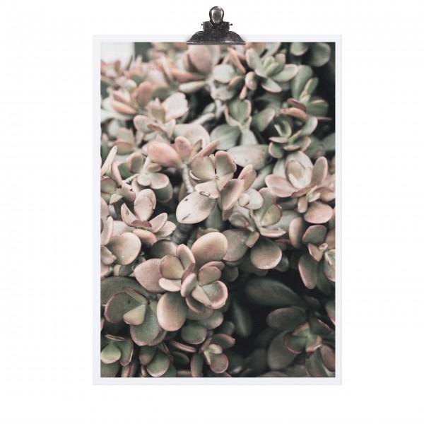Tolles Blumenmotiv von TAFELGUT!